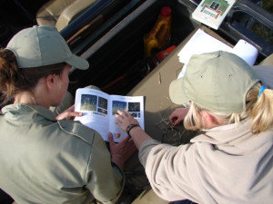Ulovane Two Year Level 2 Nature, Marine and Trails Guide Skills Program